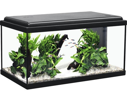 Akvarium AQUATLANTIS Advance LED 60x30x34 svart