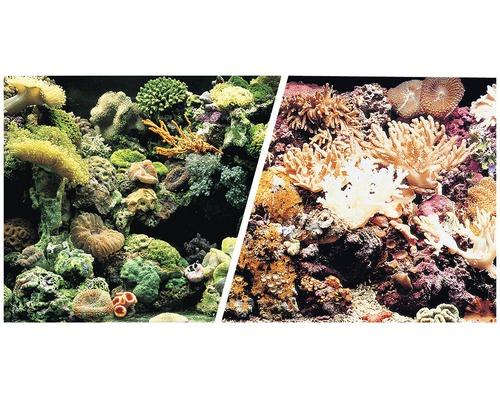 Akvariebakgrund FLUVAL 45cm rev/koraller metervara