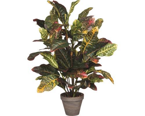 Konstväxt MICA Croton i kruka 73x40cm grå