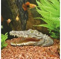 Akvariedekoration krokodilhuvud