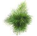 Grönmix FLORASELF 120-140cm Ø24cm sorterade färger