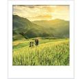 HORNBACH Style Color glansgrad 3 nr 02 Asiens soldränkta fält 2,5 l